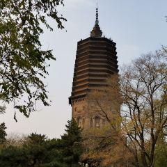 요양백탑 여행 사진