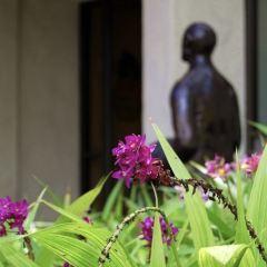 하와이 주립 미술관 여행 사진