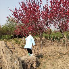 Caozhou Bai Garden User Photo