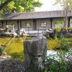 九龍寨城公園用戶圖片