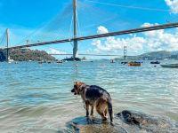 【香港沙灘2021】泳灘重開,6間近沙灘酒店介紹+9個必去親子沙灘👪
