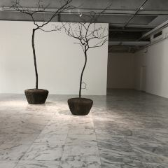 台北市立美術館用戶圖片