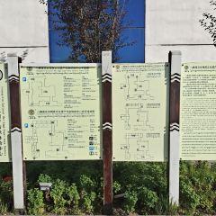 八瓣蓮花非物質文化遺產傳承體驗中心用戶圖片