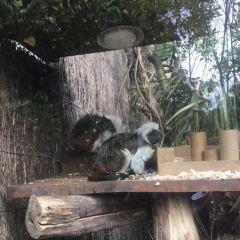 惠靈頓動物園用戶圖片