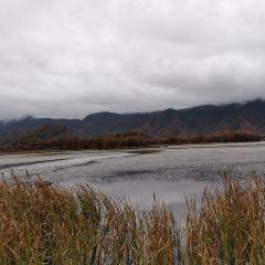 大九湖國家濕地公園用戶圖片