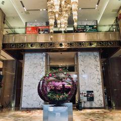 粵海喜來登酒店採悅軒中餐廳(天河城店)張用戶圖片