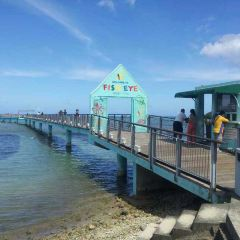 Fish Eye Marine Park User Photo