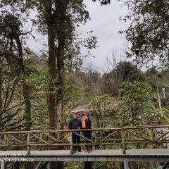 Longcang Valley User Photo