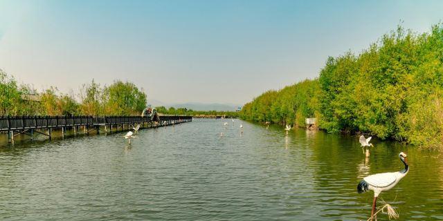 拉市海濕地公園