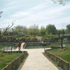 허베이(하북) 원예공원 여행 사진
