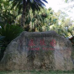 Panzhihua Park User Photo