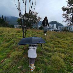 太平湖用戶圖片
