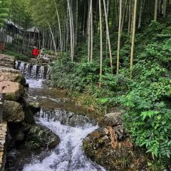 Yixing Zhuhai User Photo