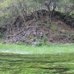 黑魚河用戶圖片