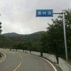Qinling Mountains User Photo