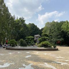 長風公園のユーザー投稿写真