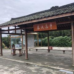 밍웨촌 여행 사진