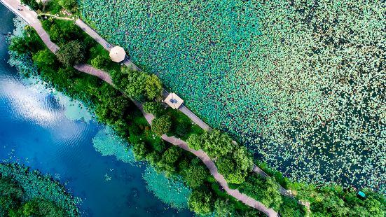 金龍水寨生態樂園