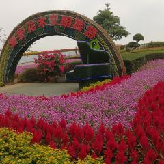 Xiamen Horticultural Expo Garden User Photo