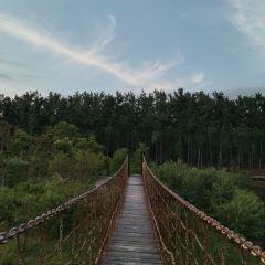 빈후 삼림 습지공원 여행 사진