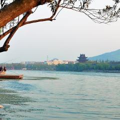 襄陽古城用戶圖片
