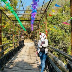 Taishan Fenghuangxia Xiaojiuzhai User Photo