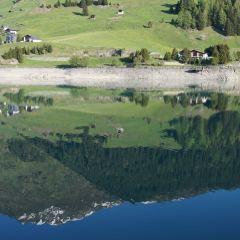 達沃斯湖用戶圖片
