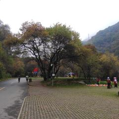 Liupanshan National Forest Park User Photo