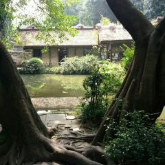 Du Fu's Thatched Cottage User Photo