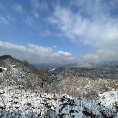 東白山用戶圖片