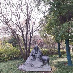 팽조원 여행 사진