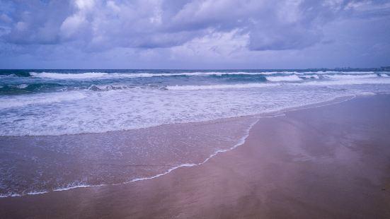敏捷歡樂黃金海岸