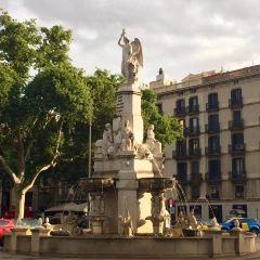 Plaza del Pi User Photo