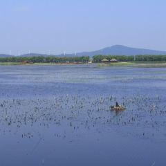 富錦國家濕地公園用戶圖片