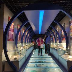 중국 지질대학 박물관 여행 사진