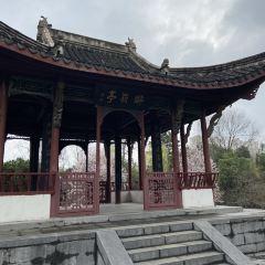 Hui Garden User Photo