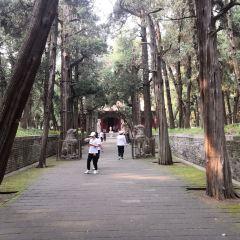 Cemetery of Confucius User Photo