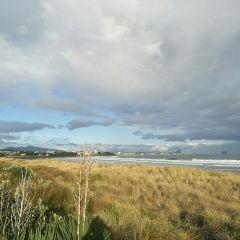 Te Rewa Rewa Bridge User Photo