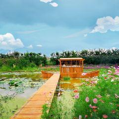 Yuelian Manor User Photo