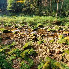 Golden Whip Stream (Jinbian Stream) User Photo