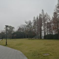 리후 공원 여행 사진