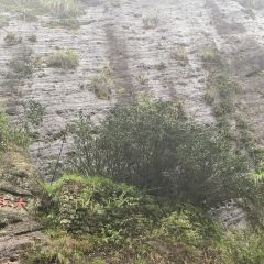 대홍포 풍경구 여행 사진