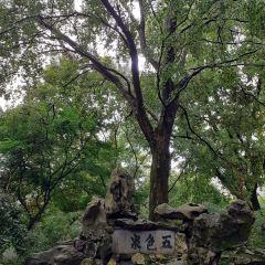 오색천 여행 사진