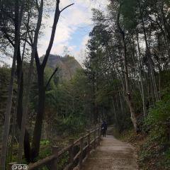 Ziyuan Tianmen Mountain User Photo