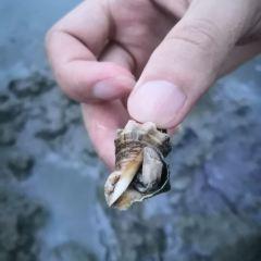藍袍灣用戶圖片