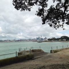 Devonport User Photo