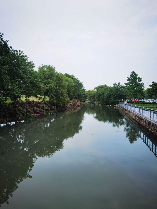Shanghai Chenshan Botanical Garden