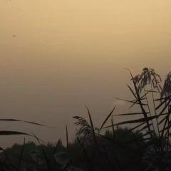 Shahu Lake User Photo