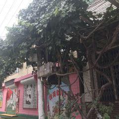 Guangdongcun User Photo