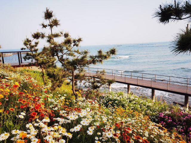Huangdao Golden Beach
